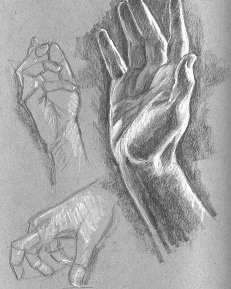 Toned paper drawings of hands